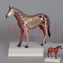 Model zvířecí - kůň